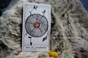 Hình Ảnh Cảm Nhận 10 Lá Pentacles Trong Wild Unknown Tarot Kênh Kiến Thức Và Tri Thức