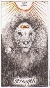 Wild Unknown Tarot - Sách Hướng Dẫn 13