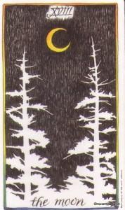 Lá The Moon - Wild Unknown Tarot 1