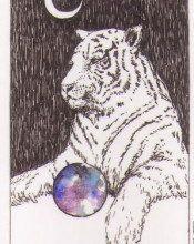 Ý Nghĩa Lá Bài The High Priestess Bộ BàiWild Unknown Tarot 84
