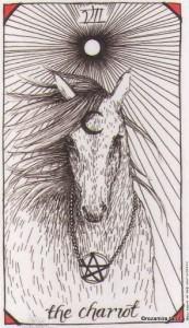 Wild Unknown Tarot - Sách Hướng Dẫn 9