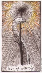 Lá Son of Wands - Wild Unknown Tarot 1