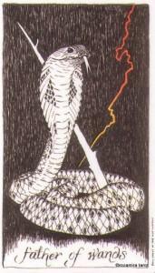 Wild Unknown Tarot - Sách Hướng Dẫn 79