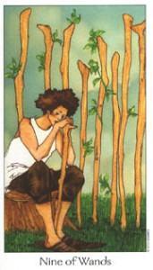 Dreaming Way Tarot - Sách Hướng Dẫn 47
