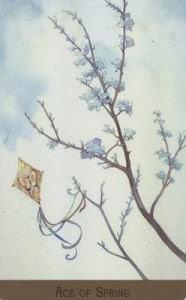 Bộ Bài Victorian Fairy Tarot - Sách Hướng Dẫn 24