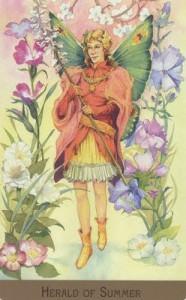 Bộ Bài Victorian Fairy Tarot - Sách Hướng Dẫn 48