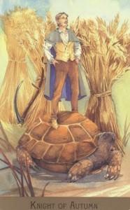 Bộ Bài Victorian Fairy Tarot - Sách Hướng Dẫn 63