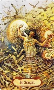 Ý Nghĩa Lá Bài 31. Seagull Bộ BàiWinged Enchantment Oracle 1