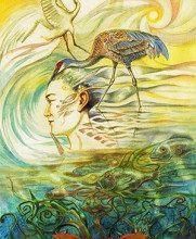 Hình Ảnh Ý Nghĩa Lá Bài 6. Crane Bộ BàiWinged Enchantment Oracle Kênh Kiến Thức Và Tri Thức