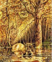 Hình Ảnh Ý Nghĩa Lá Bài 9. Duck Bộ BàiWinged Enchantment Oracle Kênh Kiến Thức Và Tri Thức