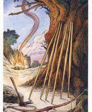 Ý Nghĩa Lá Seven of Bows Bộ BàiWildwood Tarot 92