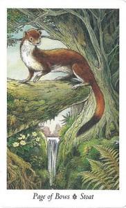 Ý Nghĩa Lá Page of Bows Bộ BàiWildwood Tarot 1