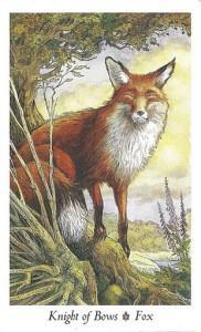 Wildwood Tarot - Sách Hướng Dẫn 35