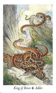 Wildwood Tarot - Sách Hướng Dẫn 37