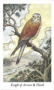 Wildwood Tarot - Sách Hướng Dẫn 63
