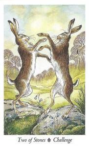 Wildwood Tarot - Sách Hướng Dẫn 67