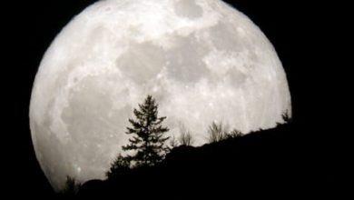 Biểu Tượng Trong Tarot – Mặt Trăng (Moon) 17