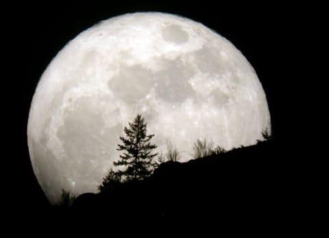 Biểu Tượng Trong Tarot – Mặt Trăng (Moon) 1