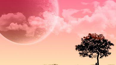 Hình Ảnh Căng thẳng trong mơ – 6 cơn ác mộng thường gặp khi bạn bị stress (Phần 2) Kênh Kiến Thức Và Tri Thức
