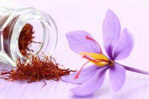 Saffron - Nhụy Hoa Nghệ Tây Có Phải Thần Dược Làm Đẹp 1