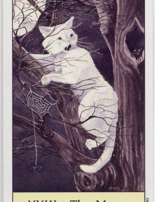 Lá XVIII. The Moon - Cat's Eye Tarot 1