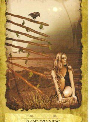 Lá 8 of Wands - Mystic Dreamer Tarot 1