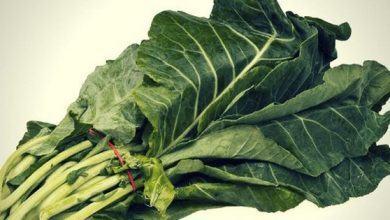 Cải rổ - loại rau có thể cứu sống bạn mà lại dễ dàng tìm mua - Kiến Thức Chia Sẻ 1