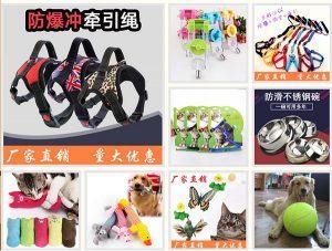 Địa chỉ bán phụ kiện thú cưng đẹp, chất lượng, giá rẻ 3